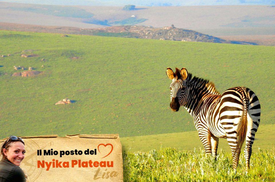 Nyika Plateau – Il mio posto del cuore